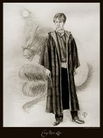 Young Remus Lupin by Ellygator