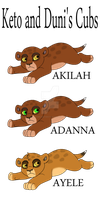 Keto and Duni's Cubs by AnimeFan4Eternity23
