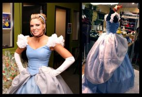 Cinderella costume by Saltlake-tightlacer