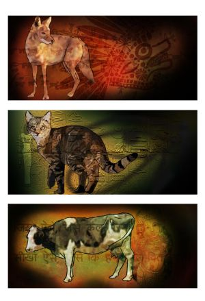 Final: Common Animals in Cultures