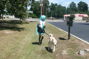 Miku Hastune Walking her dog by Allison02Uchiha