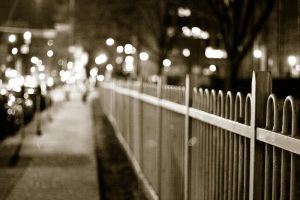 Along the Fence by fxstream