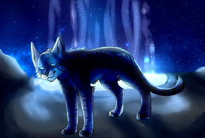 Jayfeather [redraw] by death-dog