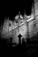 New Cathedral, Salamanca by EternityGoetia