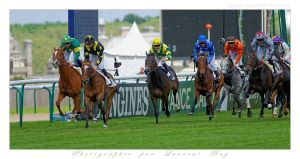 Horse Race - 009 by laurentroy