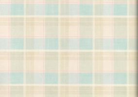 Checkered paper stock by laurengee