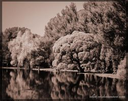 Parque stroll by vlad-m