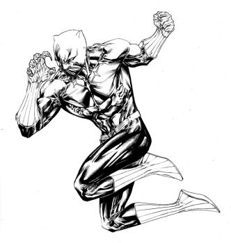 Fighting Black Panther by SpiderGuile