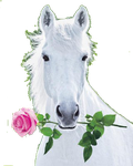 white horse with pink rose by acid133-d4hwnmr-Re by vafiehya