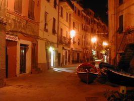 Night - Vernazza too by Gianni36