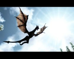 Skyrim screenshot: Dragon flight by z-zombiecat