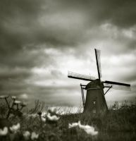 welcometo Kinderdijk III... by Kaarmen