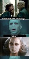 Voldemort meme by thing2139