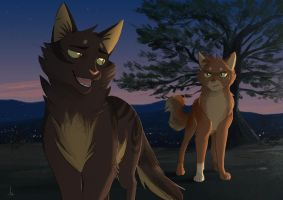 A lovely night [Warrior Cats] by OwlCoat