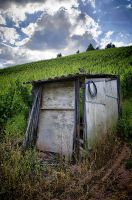 Hut in the Vineyards by m3tzgore