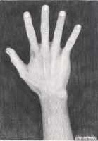 My Hand by SonicSyndrome