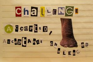 challenge accepted by BlueEyedSoul1