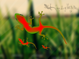 gecko by 1Reticle
