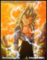 Dragonball EX SSJ5VEGETA by GreenChen
