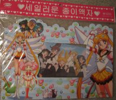 SOLD: SAILOR MOON Korean Picture Frame by hollystarlightanime