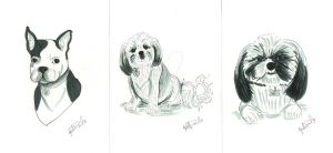 Dogs 1 by aprilmdesigns