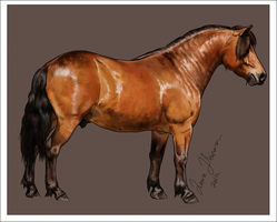 How to Draw a Horse in MyPaint Tutorial by Hei-La