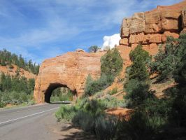Bryce Canyon Road by aura2000