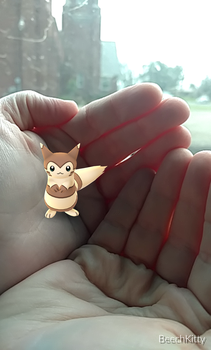 A Furret in my mom's hands by EHBTheKomata