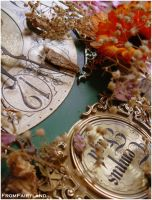 Tempus Fugit by fromfairyland