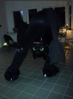 Toothless Cosplay - There You are Bud!! by TheBandicoot