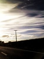 From Matamata to Auckland by amormimosse