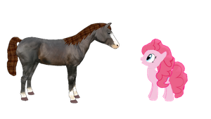 [MMD] Pinkie Pie meets a horse by MarcosLucky96
