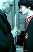 Lord Voldemort or Harry Potter by Your-Pain