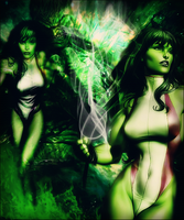She-Hulk by wild-kard2003