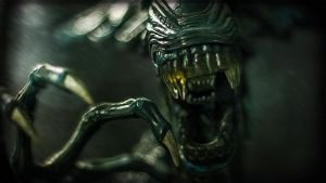 A Close Encounter with Xenomorph Queen by constantinemorte
