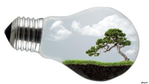 Light bulb terrarium by ampix0