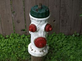 Fire Hydrant by P8ntBal1551