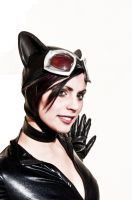 Catwoman by SehnsuchtNeedle