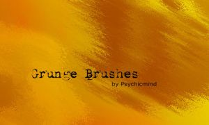 Grunge Brushes by psychicmind