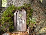 Magical door by ForestDwellerHouses