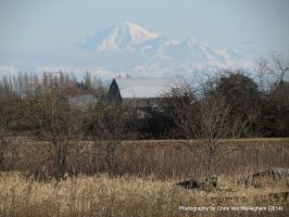 Mount Baker from a Distance by vanwaglajam