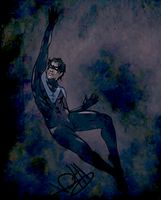 Nightwing by secretofOZ