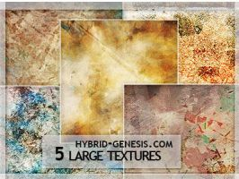 HG LARGE TEXTURES #Feb-02 by In5omn1ac