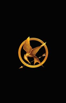 Mockingjay Pin by Co--Existance