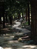 The Long Winding Road by christiline88