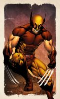 Wolverine SNIKT! by spidermanfan2099