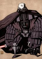 Darth Vader Unmasked by soliton