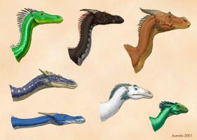 Dragon diversity: heads by Osmatar