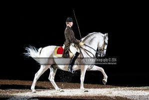Spanish Riding School 29 by JullelinPhotography