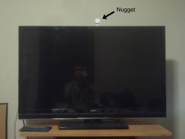Nugget on a big TV by MasonAndAGhast